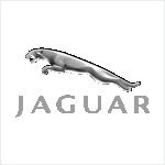 Ремонт Jaguar в Новополоцке, Полоцке и регионе